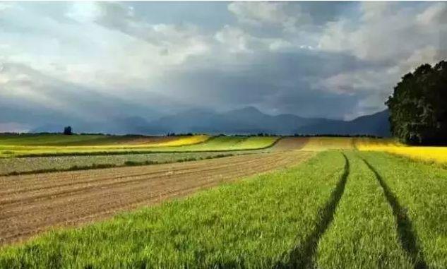 未来已来!中国农业正经历5大商业变革
