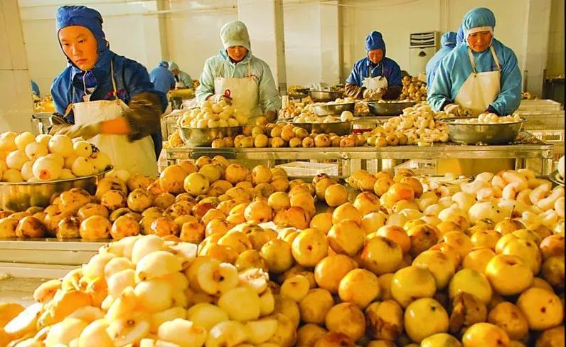 三农日报|商务部:2018年网络销售农产品达2305亿;预测:有机食品深加工将是未来趋势