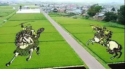 日本农业:为什么走在世界农业的前沿?