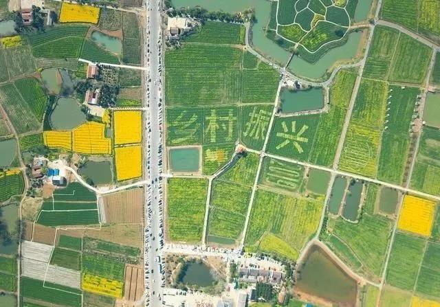 三农日报|国家推进资本支持乡村产业;美国期望中国大规模购买美国农产品