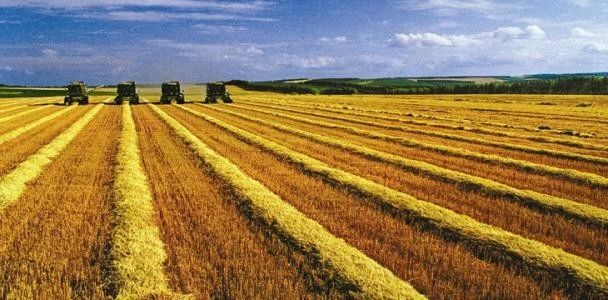 重磅|国家连续10年支持农业企业上市(附14个政策文件)
