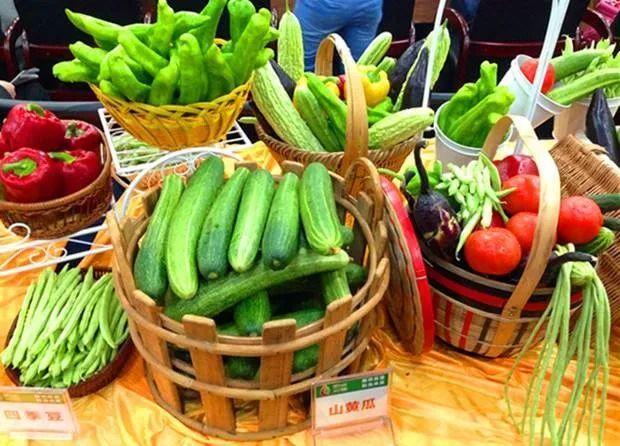 三农日报|我国试点特色农产品保险补贴;草地贪夜蛾导致玉米减产20%-70%