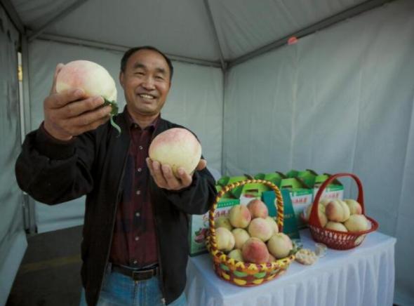 化解农产品市场信息不对称,这位专家找到了有效路径