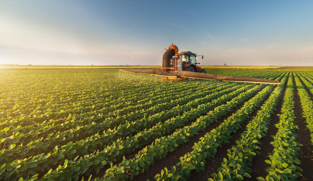 从桐庐模式谈起,看中国农业产业的嬗变之路(以安厨为例)