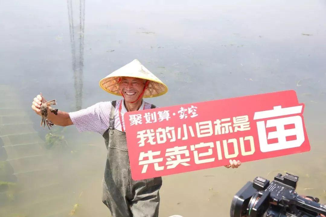 【聚划算】如何改变中国农产品走向?