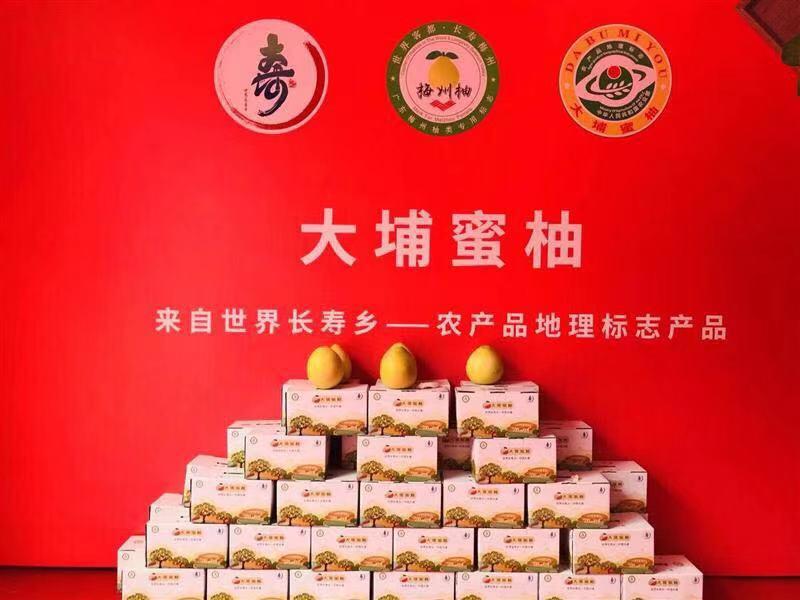 世界长寿乡大埔蜜柚推介会在京成功举办