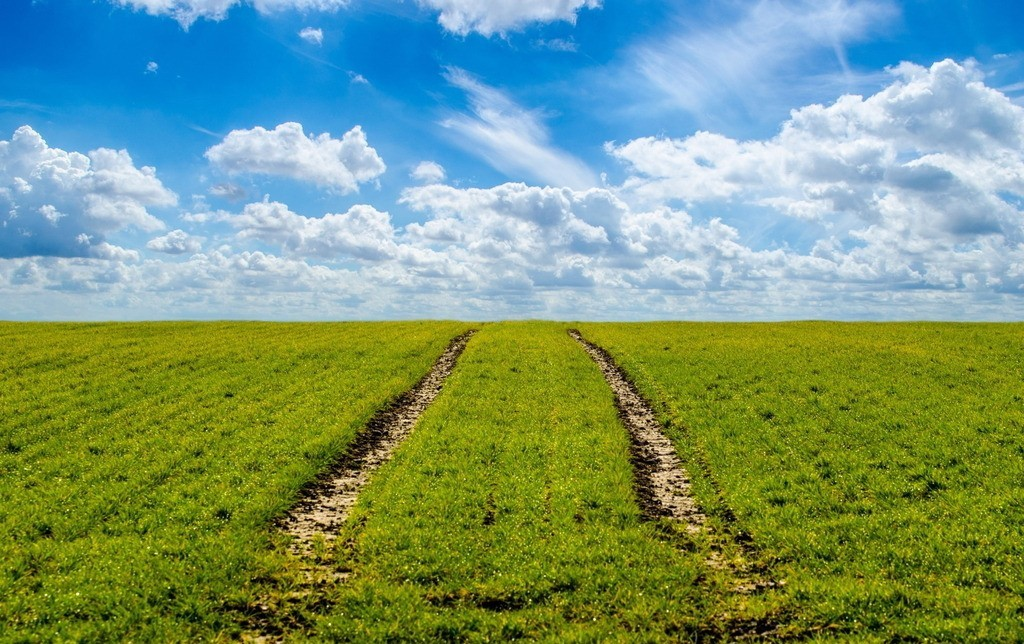 行业研究|农业学外国走进死胡同:最先进农业模式在中国