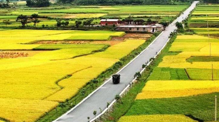 专题研究:打造产地集配中心,助力农产品上行