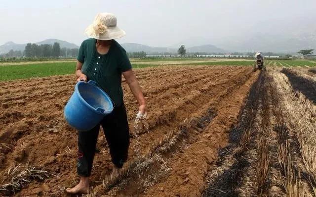 三农日报|中国涉农海外投资的难点;我国农产品综合利用率仅为40%