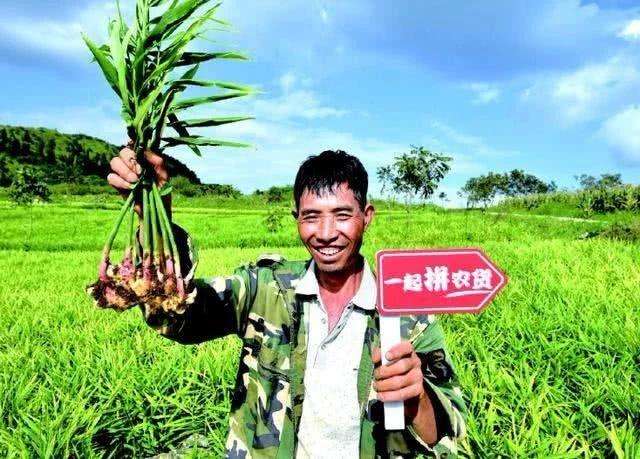 复盘!90%农产品电商都是失败的,未来要靠短视频拯救