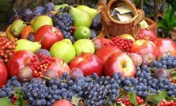 天猫构建农产品生态产业链,免费水果不香?