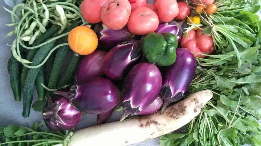 """【行业分析】""""云买菜""""成购物主流,传统菜市场格局将迎来什么变化?"""