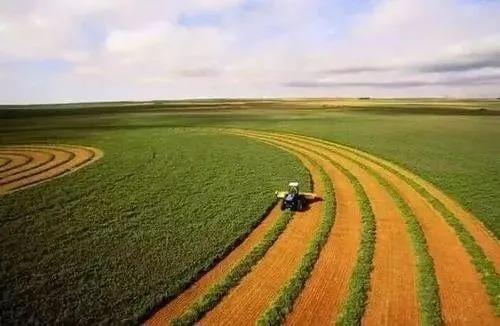 劈荆斩刺!中国农业如何追赶世界