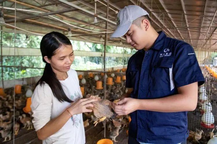 三农日报|我国农产品大流通新格局正在形成;政策支持家庭农场发展分拣包装