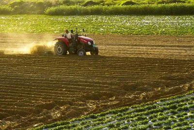 【经验干货】农业用地都可以经营什么项目?
