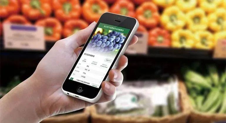 【实操经验】5G+智慧农业来临,什么是真正的农产品溯源?