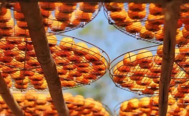 【新模式】阿里发力农产品产地初加工,未来可期!