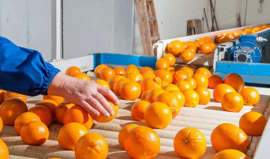 农产品产地加工:盈利困难,没有巨头,未来需要靠商业模式