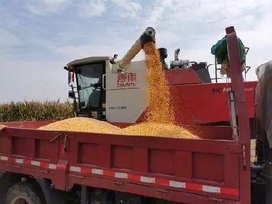 """【农业科技】""""十三五""""十大农业科技标志性成果发布"""