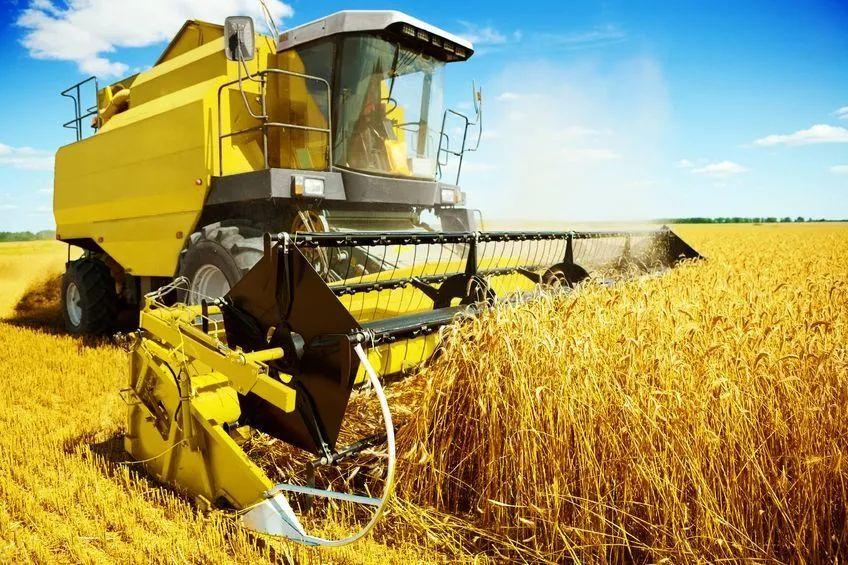 三农日报|中国地理标志农产品即将爆发;业内人士:数字农服正在兴起