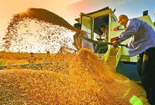 中国2020年GDP破100万亿,粮食、生猪逆势增长