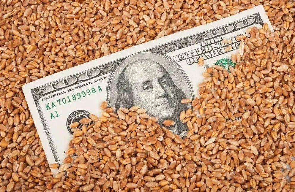 【深度透视】美国粮食巨头是怎样一步一步控制垄断中国粮食的?