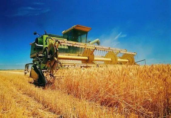 【专家观点】钟钰:如何推进农业高质量发展