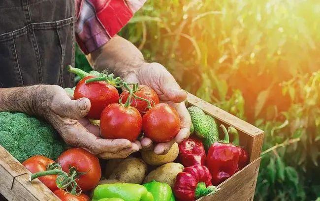 三农日报 政策:2021加强农业保险保费补贴;数据:农产品腐损率高达20%-30%