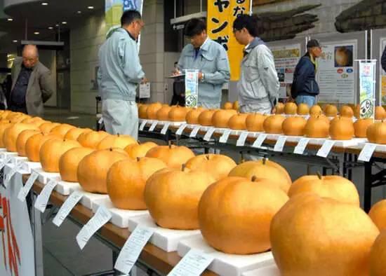 日本农业:凭为什么能走在世界前列,有一个点值得我们学习