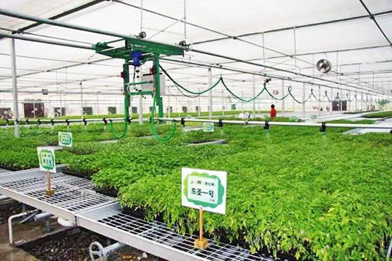 三农日报|政策:加强农业科技创新平台建设;中国农产品每年损失近2亿吨