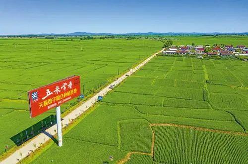 【政策解读】农业农村部:加强农产品产地仓与冷链物流建设