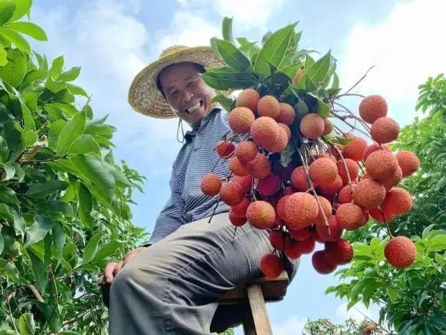 三农日报|政策:提升农产品收储加工能力;数据:预制菜市场或达5000亿