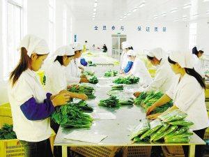 农业部:我国农产品需求呈现三个变化