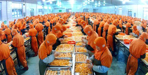 国办印发意见:进一步促进农产品加工业发展