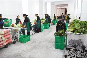 农产品流通有哪些新趋势?