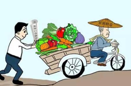 县域农产品电商如何做?