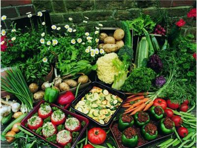 未来3年,河北将加大环首都农产品流通圈的投入