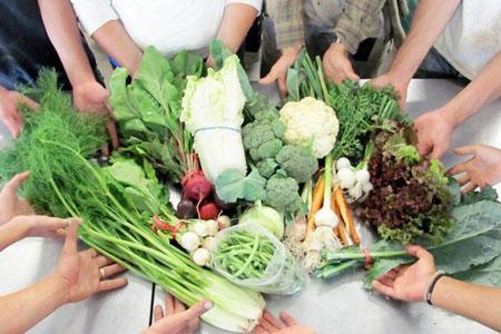 报告显示:农产品电商成湖南返乡农民工创业主流