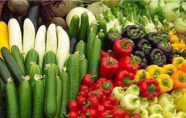快讯|未来十年我国农产品价格总体温和上涨