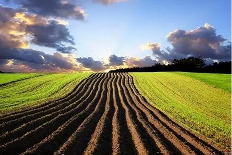最全分析!未来十年农业发展机遇就在这四大板块