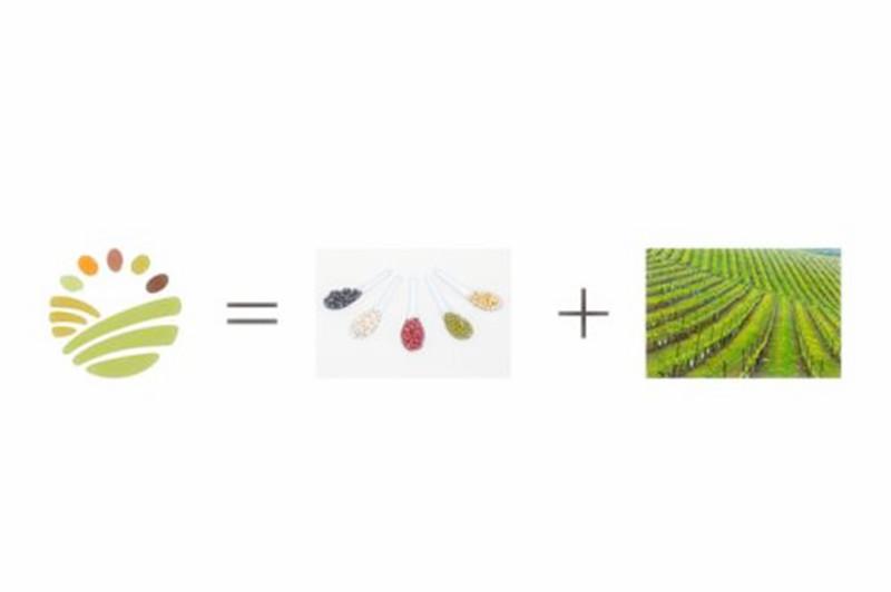农产品进阶之路,品牌农产品如何卖出十倍高价?