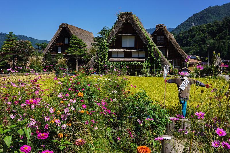日本资源弱,为何还能成为农业强国?看这6大理由!