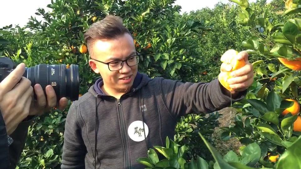独家分享|农物集创始人刘登峰:农产品品牌如何塑造
