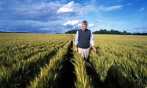 探究|丹麦农业为何如此成功?因为这7点...
