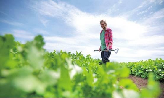 【深度剖析】你凭什么能做好农业!?