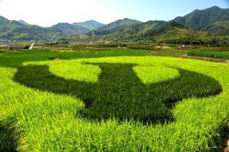 如何才能提升现代农业?靠品牌建设?