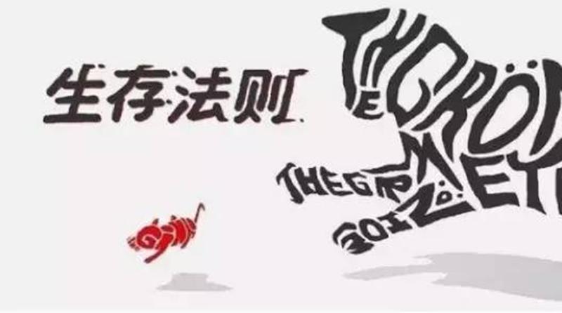 马云、刘强东都在学习:如何给自己、公司、产品做精准定位?