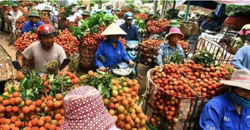 打造农产品差异化,品牌营销成功80%