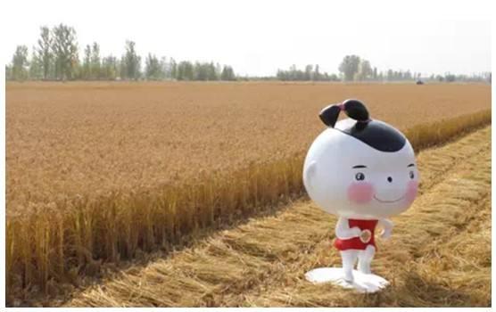 """""""不忘初心,奋力前行""""农产品如何做好""""微营销""""?"""
