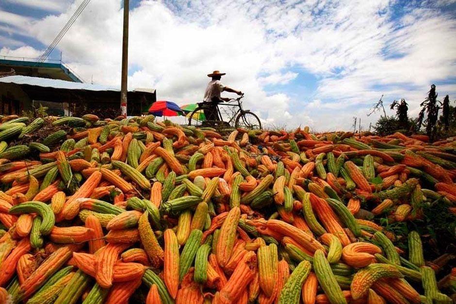 干货课堂|透视3个案例,学会农产品做微营销